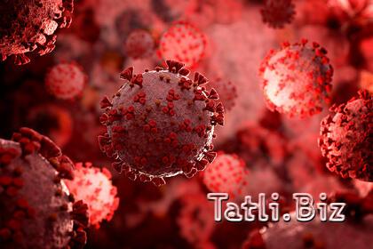 Koronavirus infeksiyası üçün yeni vasitə yaradıldı